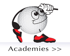 Registered academies